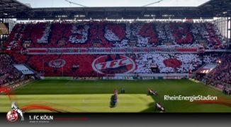 1. FC Köln – czy to się może udać?