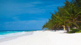 Tam też kopią: Barbados
